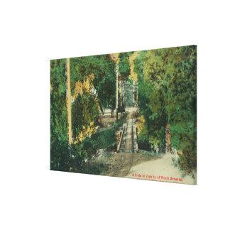 Alum Rock Park Picnic Grounds Vista View Canvas Print