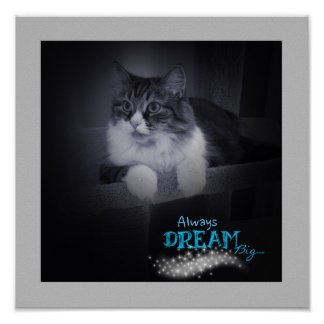 Always Dream Big Poster