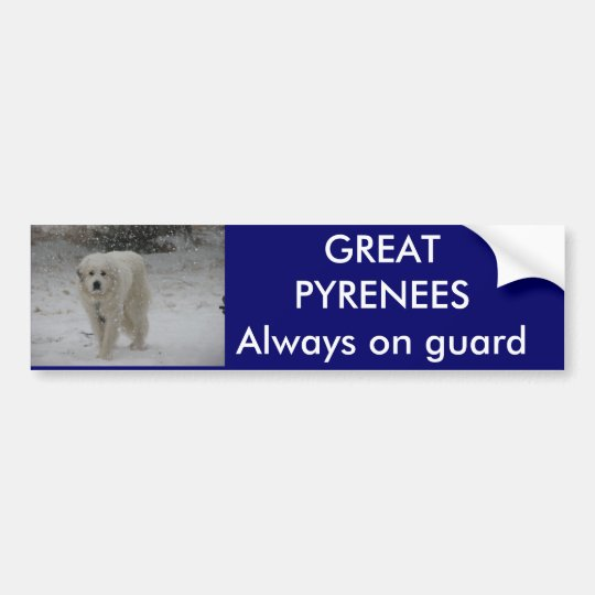 Always on guard bumper sticker