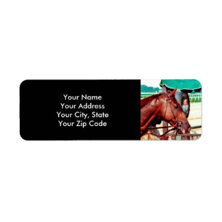 Alydar Thoroughbred 1979 Return Address Label