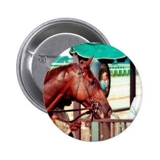 Alydar Thoroughbred Racehorse 1979 Pinback Buttons