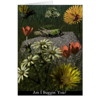 Am I Buggin' You? Card