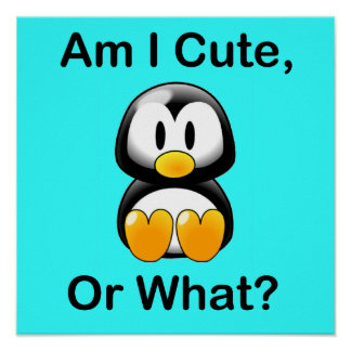 Am I Cute, Or What? Poster
