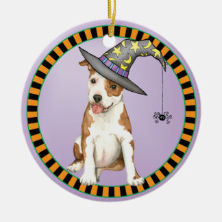 Am Staff Witch Round Ceramic Ornament