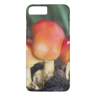 Amanita family mushroom iPhone 7 plus case