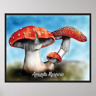 Amanita Mascaria Mushroom Poster Print