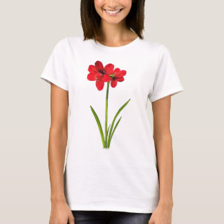 Amaryllis in red T-Shirt