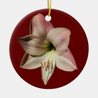 Amaryllis ~ ornament
