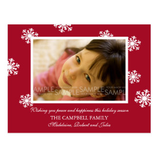 Amaryllis Snowflakes :: Christmas Photo Postcard