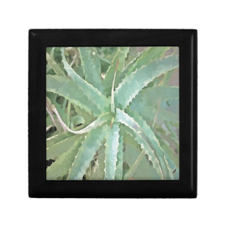 Amazing Aloe Vera Gift Box