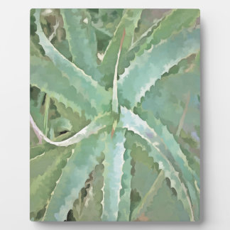 Amazing Aloe Vera Plaque