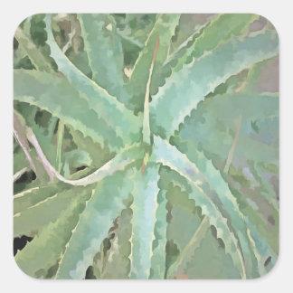 Amazing Aloe Vera Square Sticker