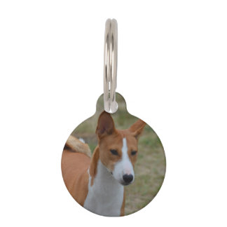 Amazing Basenji Dog Pet Name Tag