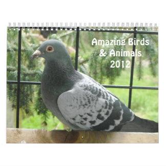 Amazing Birds and Animals 2012 Wall Calendars