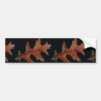 Amazing Black oak leaf Bumper Sticker