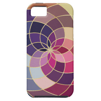 Amazing Colorful Abstract Design iPhone 5 Covers