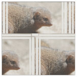 Amazing Dwarf Mongoose Fabric