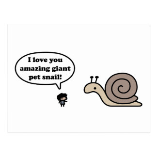 Amazing Giant Pet Snail Postcard