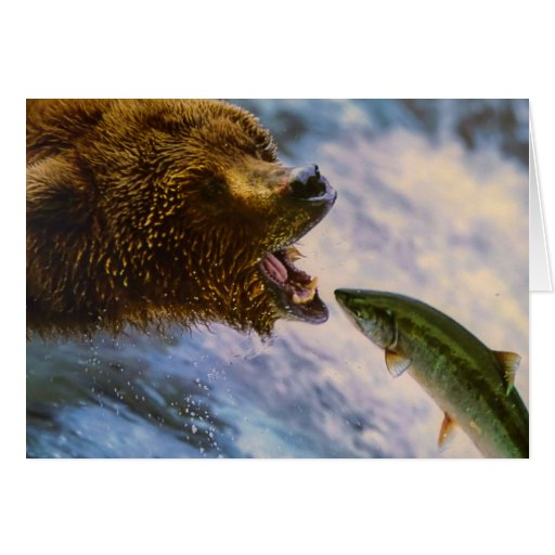 Amazing grizzly bear salmon image cards