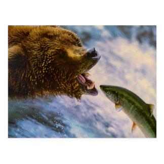 Amazing grizzly bear salmon image postcard