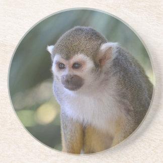 Amazing Squirrel Monkey Beverage Coasters