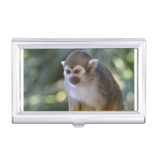 Amazing Squirrel Monkey Business Card Holder