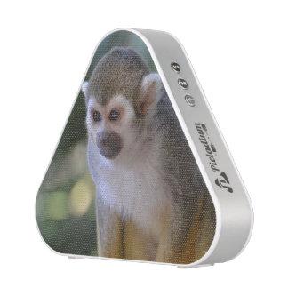 Amazing Squirrel Monkey Speaker