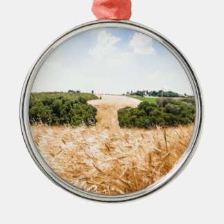 Amazing Tuscany Silver-Colored Round Ornament