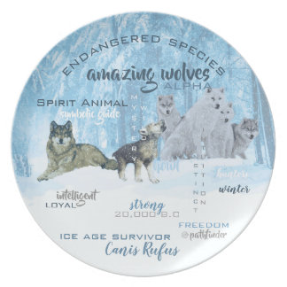 Amazing Wolves Typography | Personalized Plate