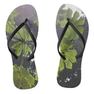Amazon Leaf Flipflops Flip Flops