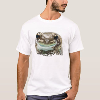 Amazon Milk Frog - Trachycephalus Resinifictrix T-Shirt