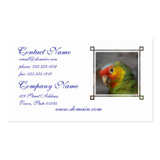 Amazon Parrot Business Card