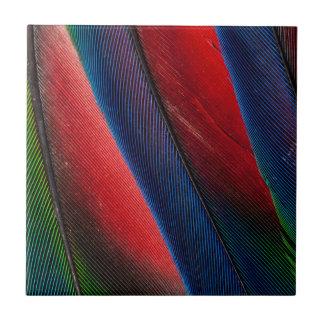 Amazon parrot feather design tile