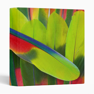 Amazon Parrot Feather Still Life 3 Ring Binders