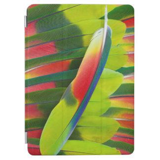 Amazon Parrot Feather Still Life iPad Air Cover