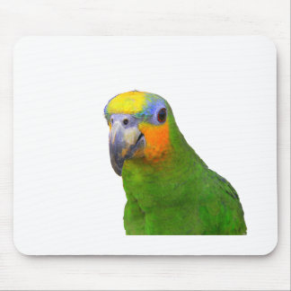 Amazon Parrot Mouse Pad