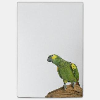 Amazon Post-it® Notes 4 x 6