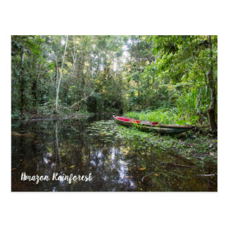 Amazon Rainforest Postcard