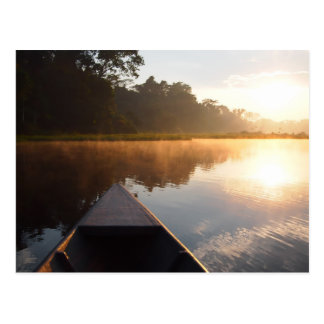 Amazon rainforest sunrise postcard