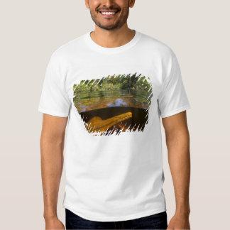 Amazon River Dolphins (Inia geoffrensis) Ariau Tee Shirt