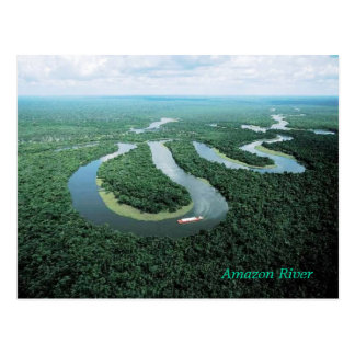Amazon River Postcard