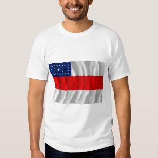 Amazonas, Brazil Waving Flag T-shirt