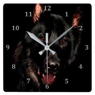 Amber Eyed Black German Shepherd Dog Square Wall Clock