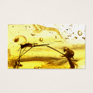 Amber inclusion business card