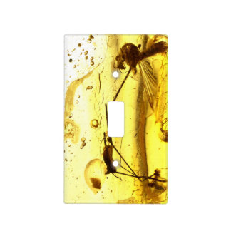Amber inclusion light switch cover