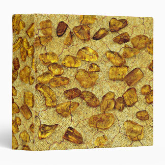 Amber inclusions | binder