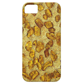 Amber inclusions | case for the iPhone 5