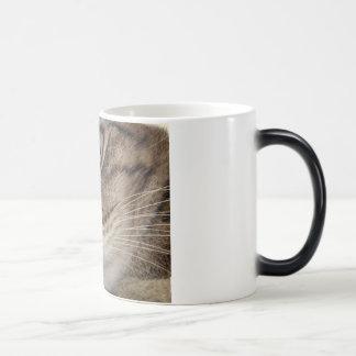 Amber Magic Mug