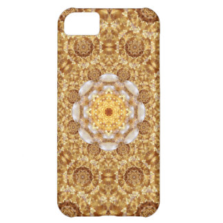 Amber Mandala iPhone 5C Cases