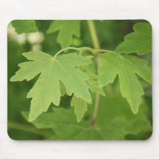 Amber Orientalis Leaves Mouse Pad